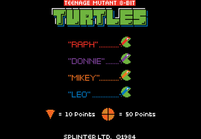 8 Bit Turtles  Artwork