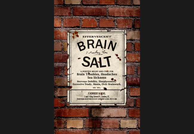 Brain Salt  Artwork