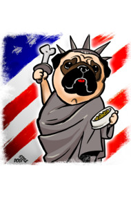 Independence Day Pug
