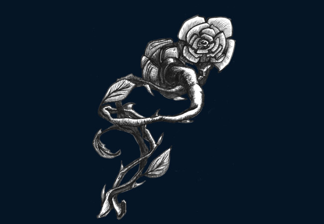 Twisted Nature Roses  Artwork