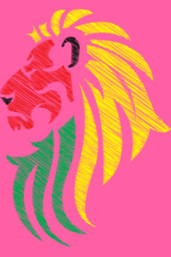 Lion Reggae Music Flag Colors