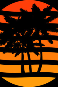 Palm Trees Grunge Sunset