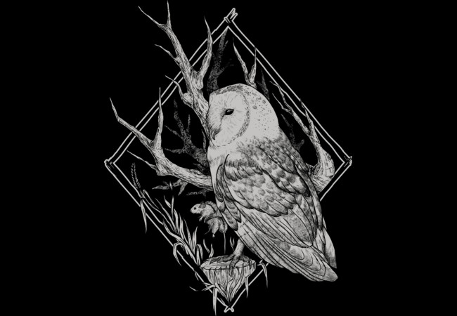 The owl  Artwork