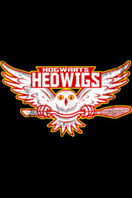 Team Hedwigs