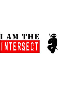 I AM THE  INTERSECT Chuck Ninja Man Stick