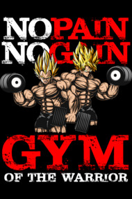 Gym of the warrior