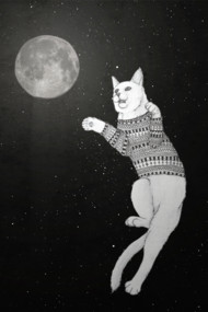 Cat trying to catch the Moon