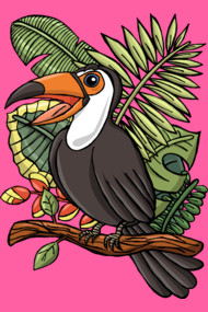 The Exotic Toucan Bird