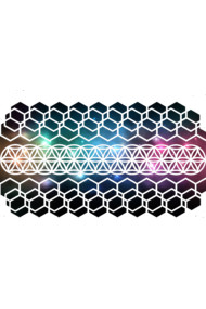 Galaxy Flower of Life