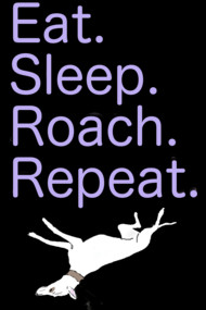 The Greyhound Mantra : Eat. Sleep. Roach. Repeat.