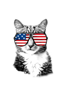 Cat USA by Scarlett1972