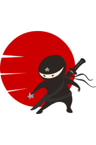 LITTLE NINJA STAR